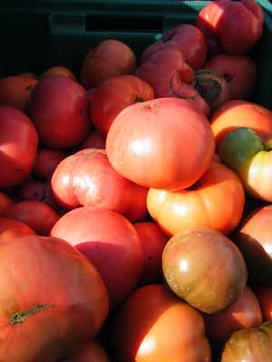 heirloomtoms